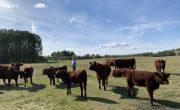PW-Pasture-Visit-Web